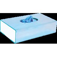 ENDO-STATION GO GLOVE BOX ( Органайзер для оглядових рукавичок )