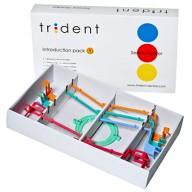 Позиционеры Trident
