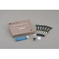 PALFIQUE Estelite PASTE Syringe Intro Kit ІІ  (Палфік Інтро набір)